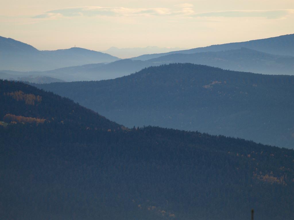 http://www.bayerwaldwandern.de/november11/5nov11_04.jpg