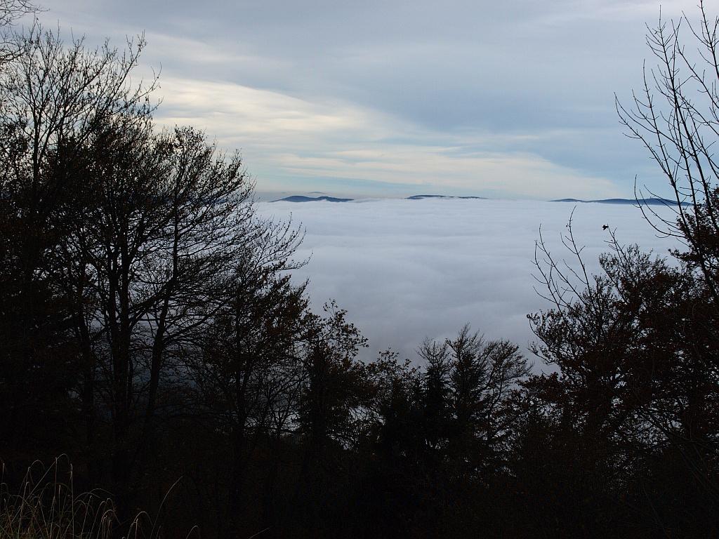 http://www.bayerwaldwandern.de/november11/5nov11_08.jpg
