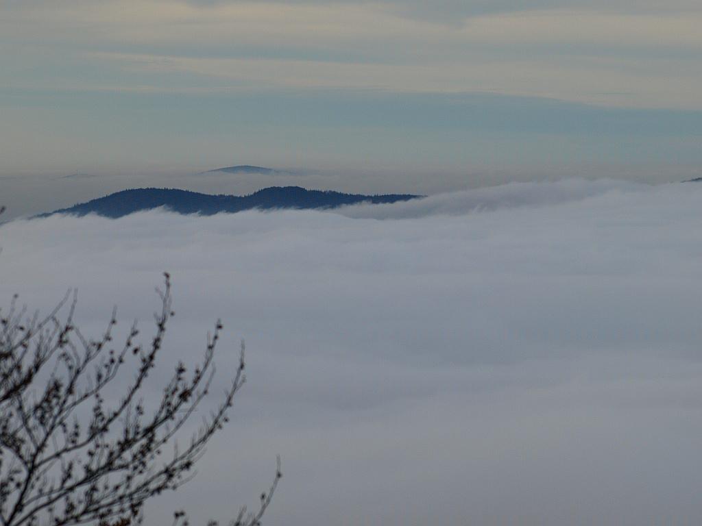 http://www.bayerwaldwandern.de/november11/5nov11_10.jpg