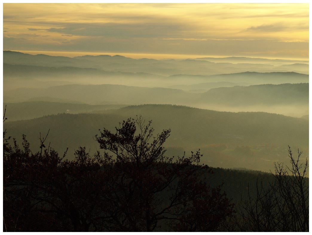 http://www.bayerwaldwandern.de/november11/5nov11_18.jpg