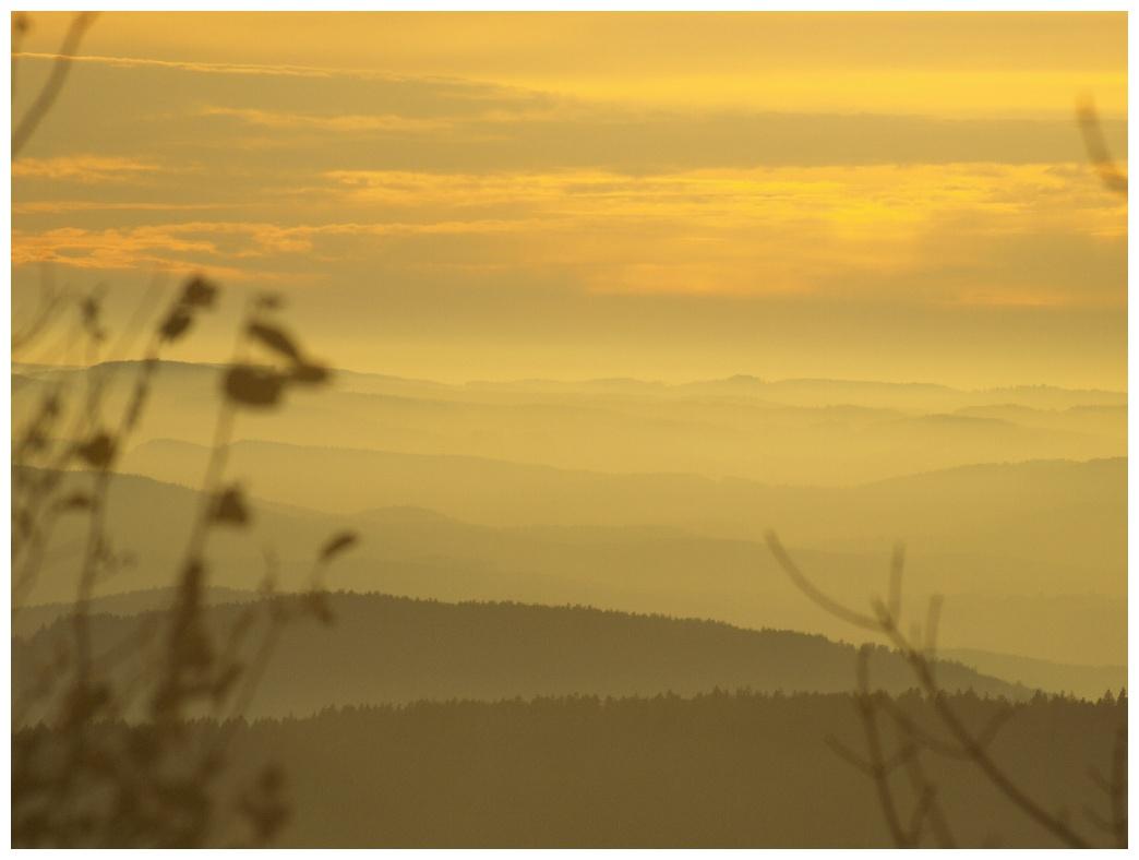 http://www.bayerwaldwandern.de/november11/5nov11_20.jpg