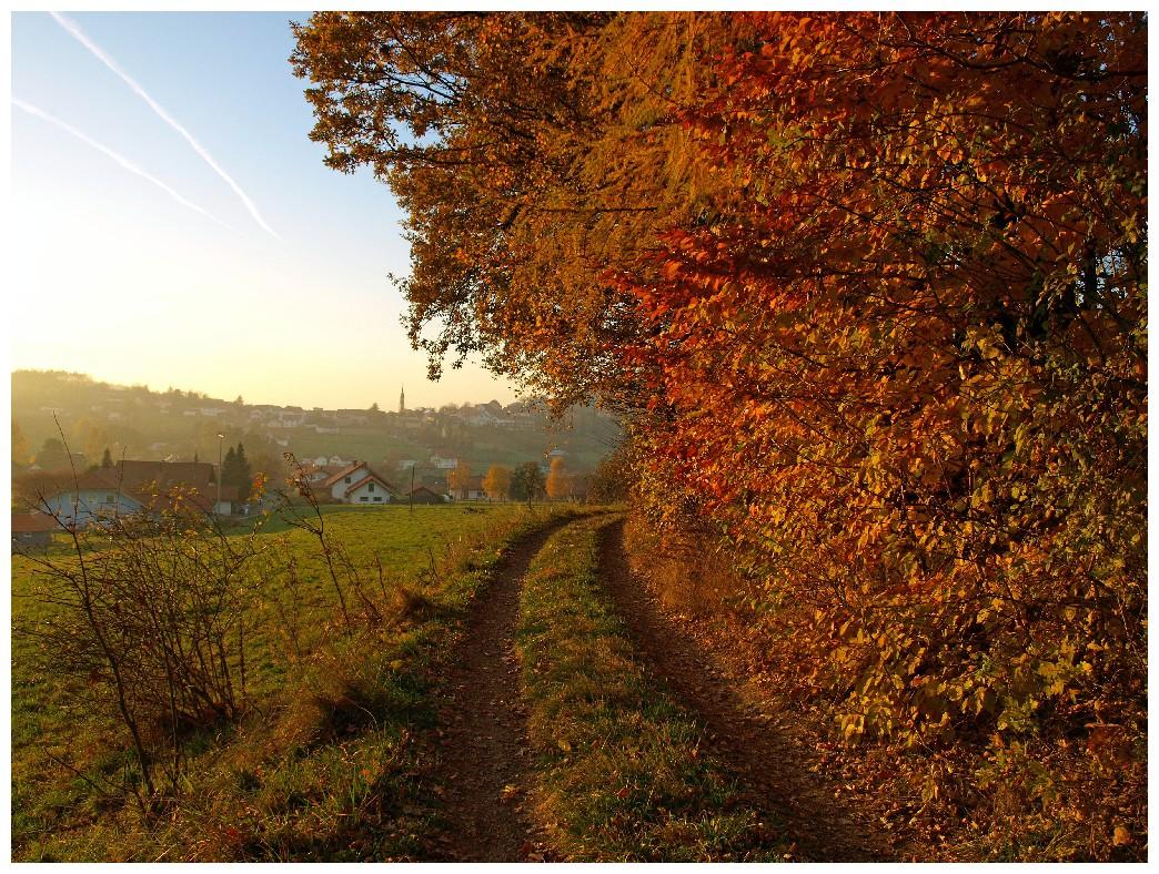 http://www.bayerwaldwandern.de/oktober10/31oktober10_34.jpg