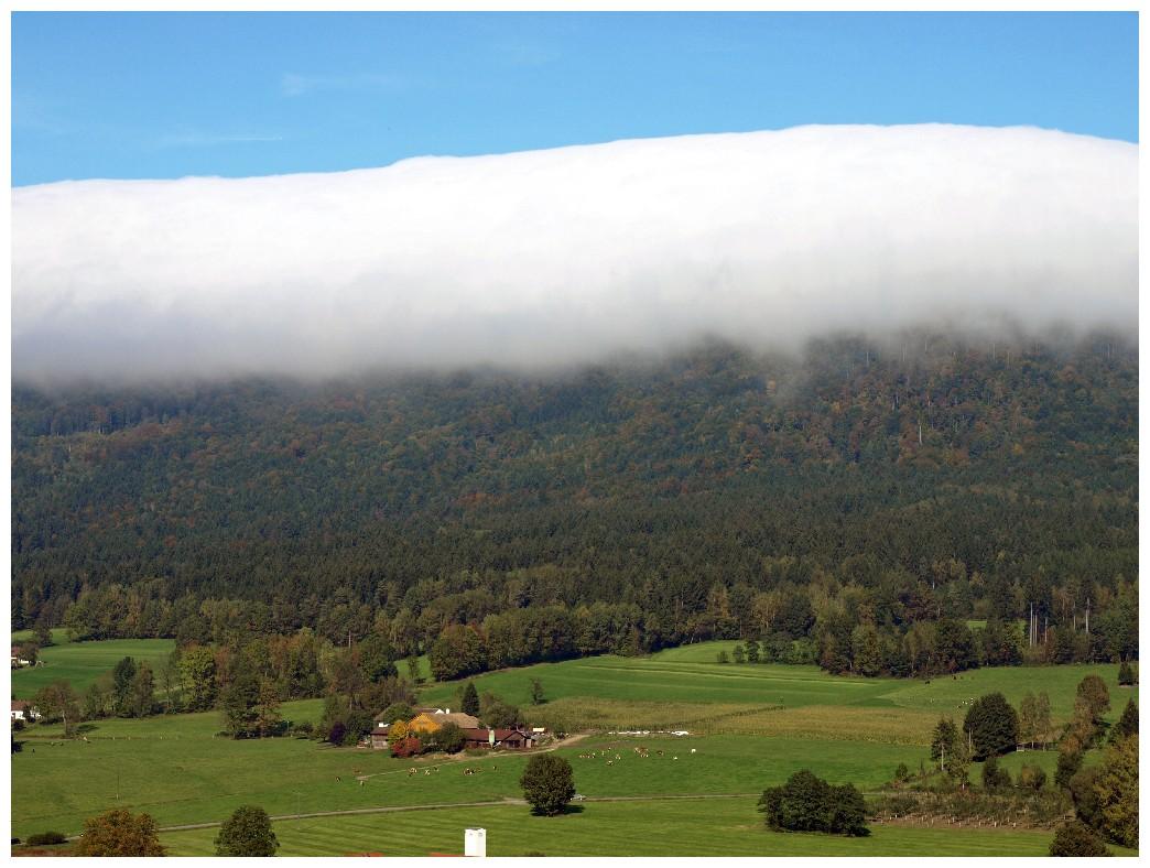 http://www.bayerwaldwandern.de/oktober10/3okt10_06.jpg