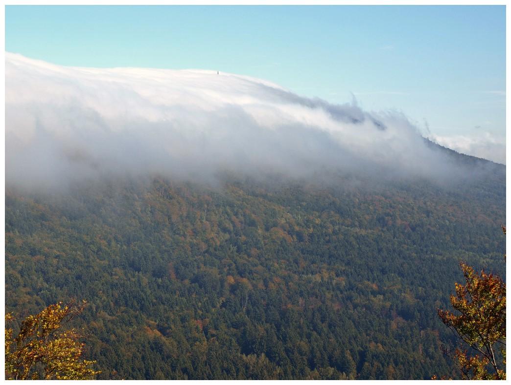 http://www.bayerwaldwandern.de/oktober10/3okt10_11.jpg