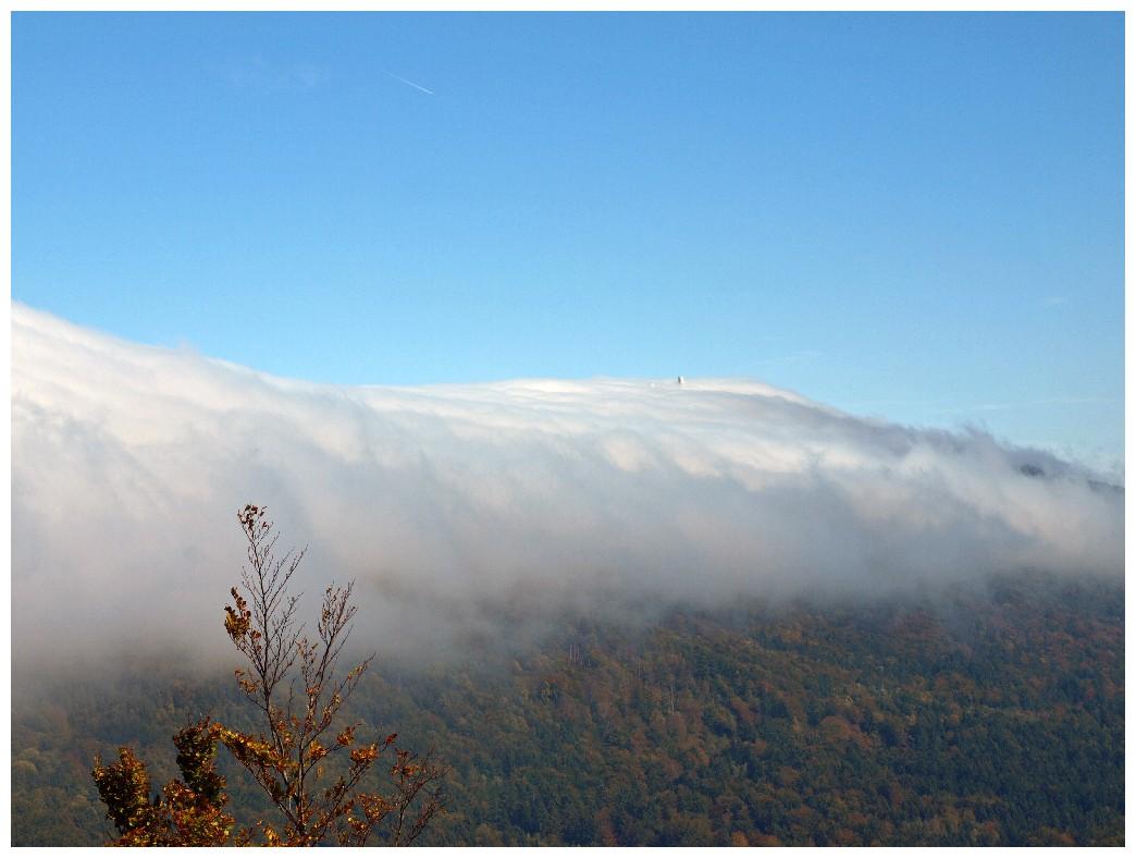 http://www.bayerwaldwandern.de/oktober10/3okt10_12.jpg