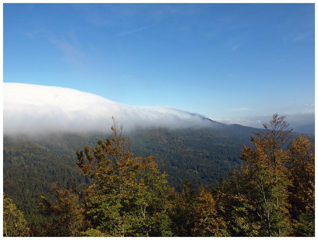 http://www.bayerwaldwandern.de/oktober10/3okt10_13.jpg