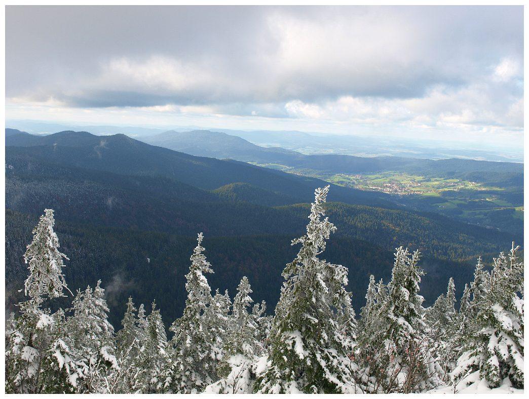 http://www.bayerwaldwandern.de/oktober11/9okt11_29.jpg