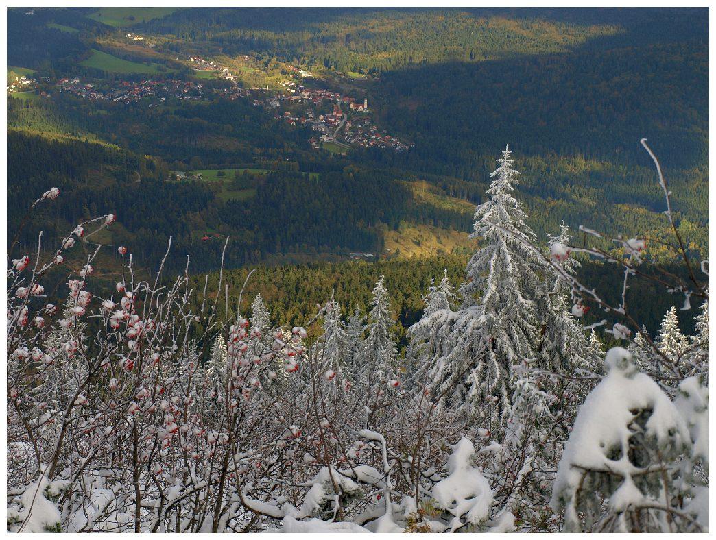 http://www.bayerwaldwandern.de/oktober11/9okt11_45.jpg