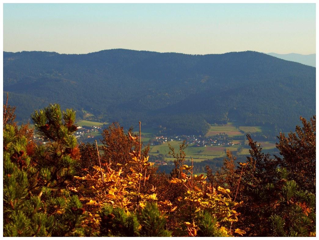 http://www.bayerwaldwandern.de/oktober11/okt11_11.jpg