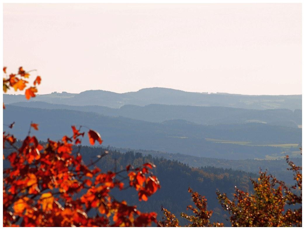http://www.bayerwaldwandern.de/september11/30sept_03.jpg