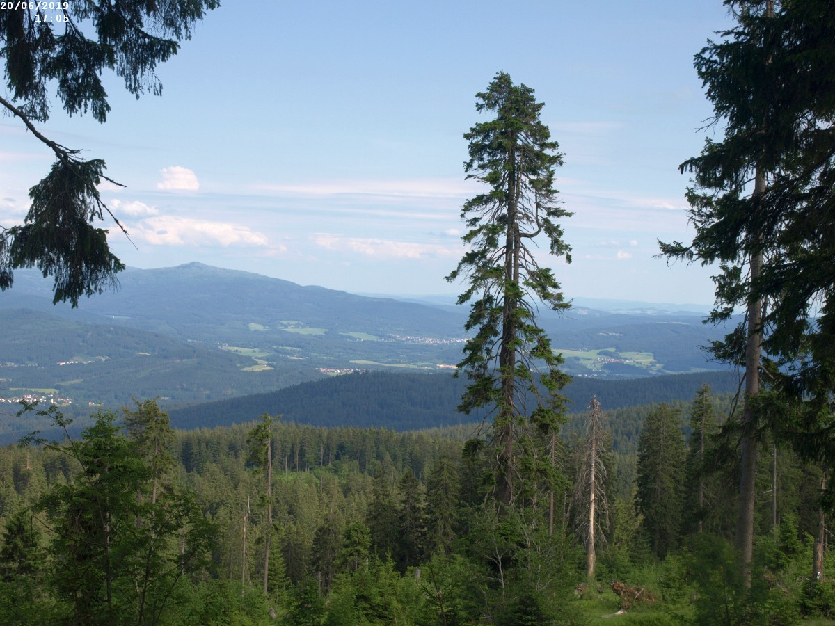 https://www.bayerwaldwandern.de/2019/200619_12.jpg